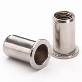 Flat Head Round Body Rivet Nut